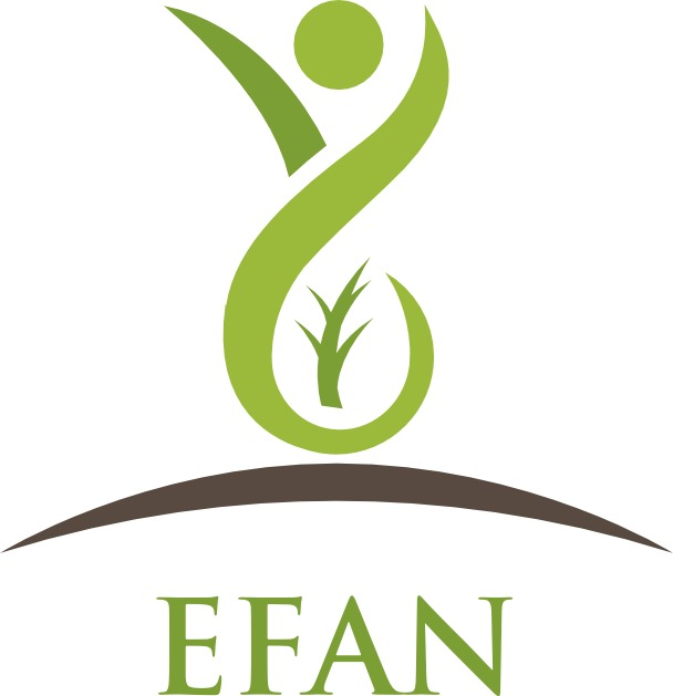 Edmonton and area Fetal Alcohol Network Society